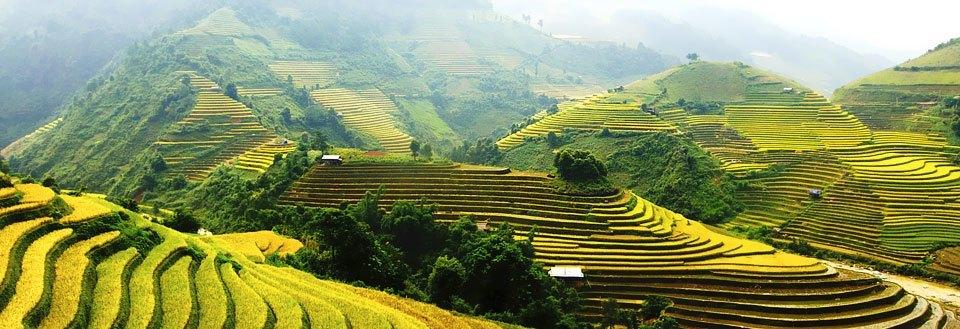 Reiser til Vietnam